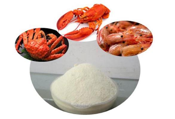 Nghiên cứu mới về ứng dụng hoạt chất chitosan trong giảm cân - Ảnh 1.