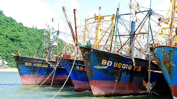 28 tàu cá Nghị định 67 bị bảo hiểm chê - Ảnh 1.
