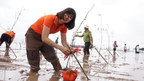 Những người trẻ trồng cây phủ xanh Việt Nam - Ảnh 1.
