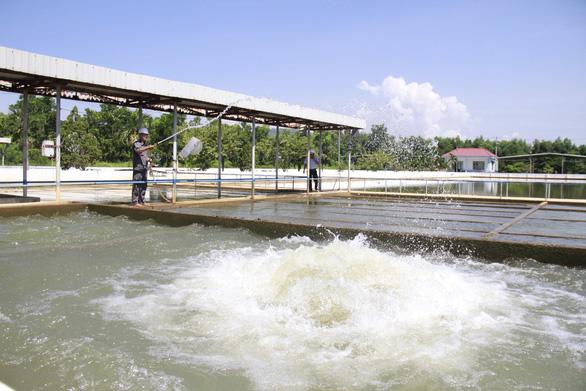 Đà Nẵng yêu cầu báo cáo toàn diện gói thầu nhà máy nước ngàn tỉ - Ảnh 2.