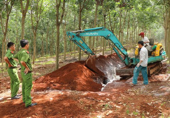 Tiêu hủy hơn 1,6 tấn thịt nhiễm dịch tả heo châu Phi ở Bình Phước - Ảnh 1.