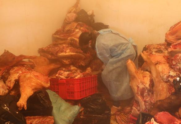 Tiêu hủy hơn 1,6 tấn thịt nhiễm dịch tả heo châu Phi ở Bình Phước - Ảnh 4.