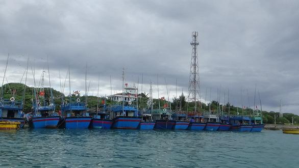 Hàng ngàn ngư dân vào Trường Sa tránh bão số 6 - Ảnh 3.