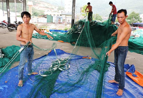 700 tàu cá xa bờ các tỉnh về trú cảng Hòn Rớ trước bão số 6 - Ảnh 3.