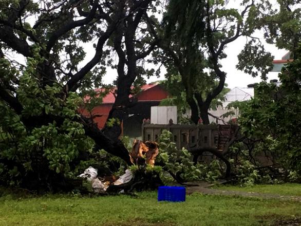 Gió bão quần thảo Song Tử Tây nhiều giờ - Ảnh 1.