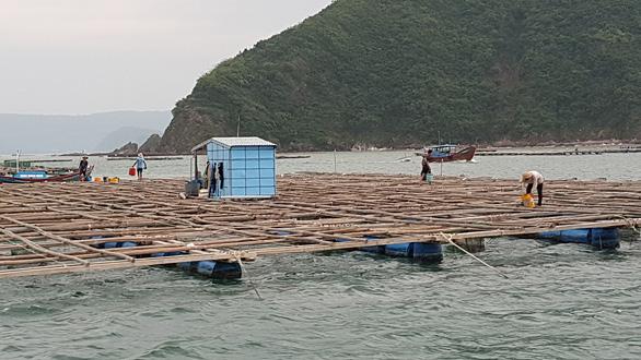 Tâm bão số 6 Bình Định, Phú Yên chằng chống mọi thứ trước giờ G - Ảnh 9.