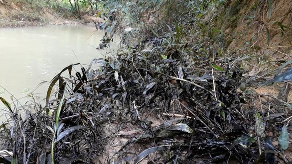 Phát hiện 200 lít dầu thải đổ ở đầu nguồn sông Hiếu - Ảnh 2.