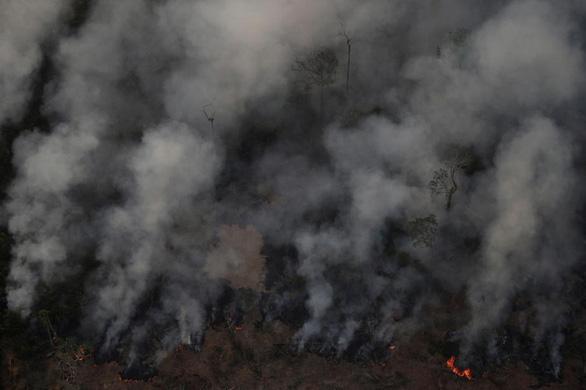 Leonardo DiCaprio bác cáo buộc nhúng tay vào vụ cháy rừng Amazon - Ảnh 2.