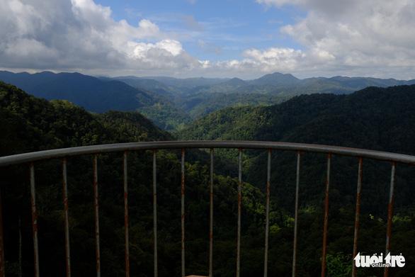 Ngắm biển mây trôi giữa rừng xanh Đỉnh Quế quanh năm mát lạnh - Ảnh 7.