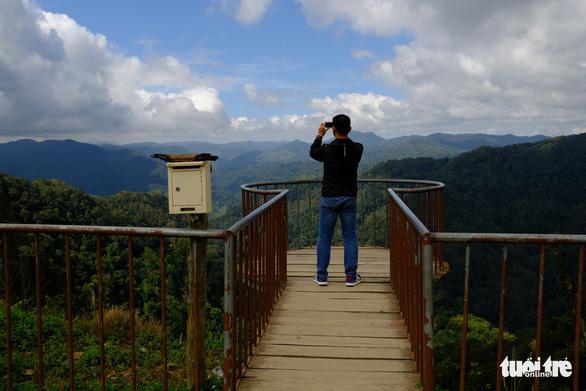 Ngắm biển mây trôi giữa rừng xanh Đỉnh Quế quanh năm mát lạnh - Ảnh 4.