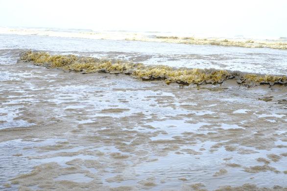 Nước biển đen như cà phê ở Dung Quất có nồng độ pH vượt mức cho phép - Ảnh 3.