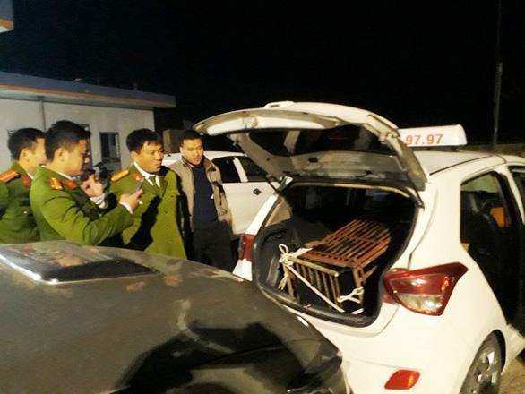 Giữa trận chung kết, thuê taxi chở gấu nặng 140kg đi bán bị bắt quả tang - Ảnh 1.