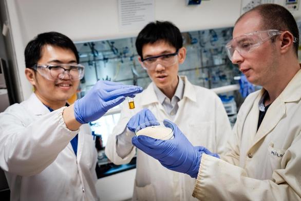 Nhóm nghiên cứu biến rác thải nhựa thành axit có thể tạo ra điện - Ảnh 1.