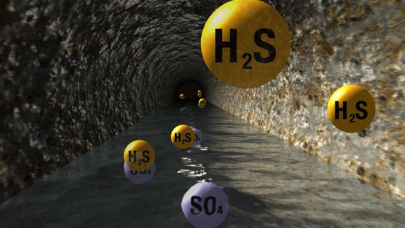 Cách nào nhận biết khí H2S, tránh nguy cơ ngộ độc? - Ảnh 2.