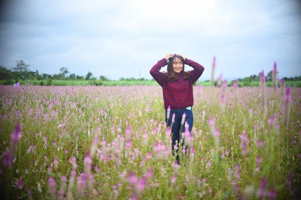 Cánh đồng hoa dền cát trời cho đẹp lạ lùng ở Phú Yên - Ảnh 3.