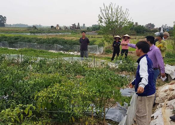Ruộng ớt bị phá tan, dân nghi do mình phản đối mở rộng đường nội đồng - Ảnh 2.