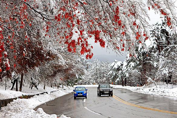 Tận hưởng mùa tuyết xứ Hàn - Ảnh 1.