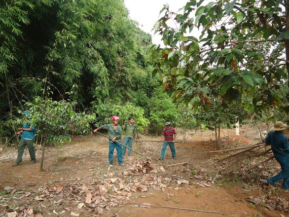 Chi sai hàng tỉ đồng trong quản lý, bảo vệ rừng ở Bình Phước - Ảnh 1.