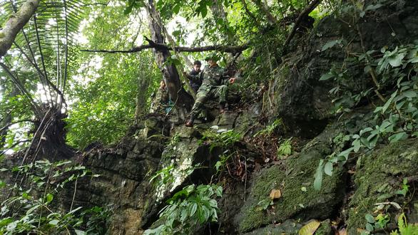 Đi tìm rừng thiêng - Kỳ 1: Chinh phục đỉnh bách - Ảnh 1.