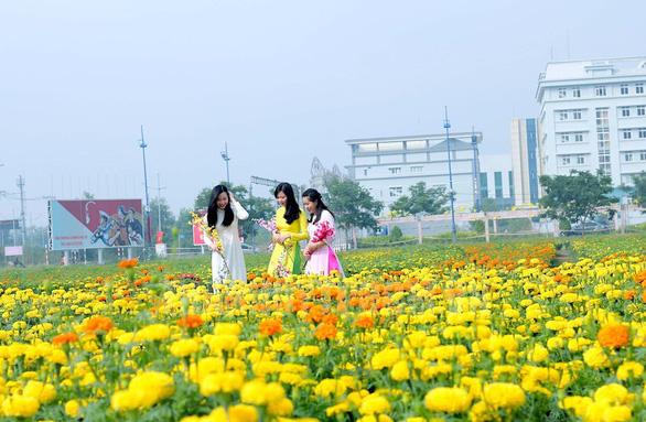 Phát triển đường hoa mai vàng Bình Chánh thành đặc sản du xuân - Ảnh 2.
