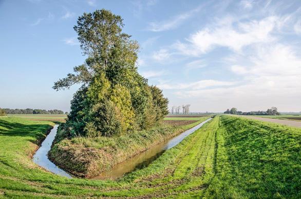 Chính phủ Hà Lan phải mua lại đất của dân làm đầm lầy thoát nước - Ảnh 2.