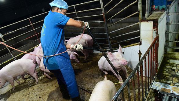 Luật mới từ 1-1-2020: Phải đối xử nhân đạo với vật nuôi - Ảnh 1.
