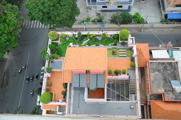 TP.HCM phát động trồng cây tạo mảng xanh làm đẹp thành phố dịp tết - Ảnh 3.