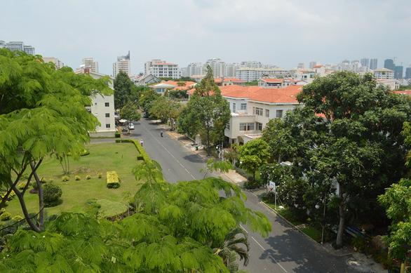 TP.HCM phát động trồng cây tạo mảng xanh làm đẹp thành phố dịp tết - Ảnh 1.