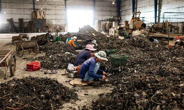Thái Lan siết nhập khẩu rác thải điện tử, rác nhựa - Ảnh 2.