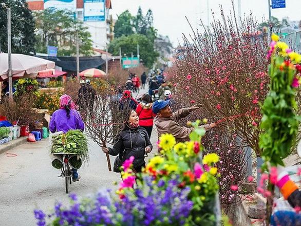 Hà Nội sẽ có 51 điểm chợ hoa xuân phục vụ Tết - Ảnh 1.