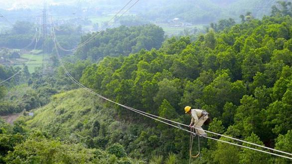 Những người nhện xuyên Việt - Kỳ cuối: Ruồi vàng, bọ chó, gió Đắk Glei - Ảnh 2.