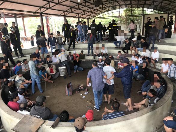 Tạm giữ hình sự 13 người trong vụ 125 người đá gà ăn tiền tại Phú Yên - Ảnh 1.