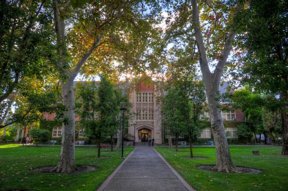 Học bổng du học Mỹ 2020 từ các Đại học TOP - Ảnh 1.