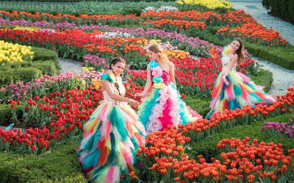 Thanh xuân có hạn, chờ chi mà không đến cánh đồng hoa tulip lớn nhất Việt Nam - Ảnh 1.