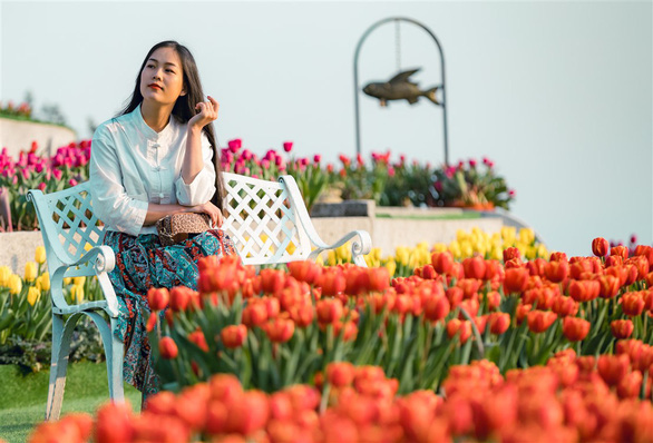 Thanh xuân có hạn, chờ chi mà không đến cánh đồng hoa tulip lớn nhất Việt Nam - Ảnh 5.