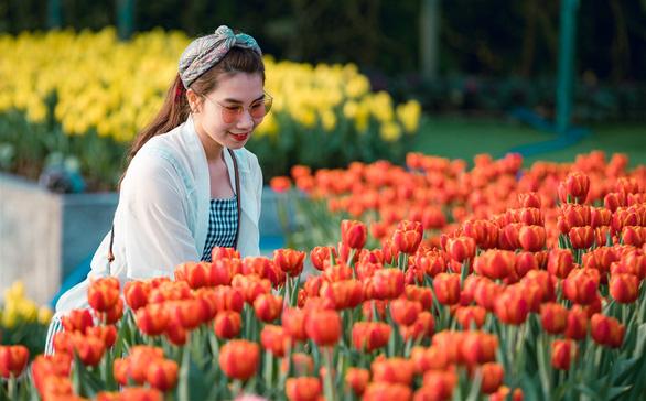 Thanh xuân có hạn, chờ chi mà không đến cánh đồng hoa tulip lớn nhất Việt Nam - Ảnh 3.