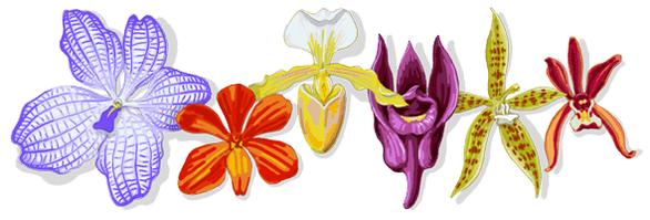 Người đưa hoa lan từ thượng lưu ra đại chúng lên trang chủ Google - Ảnh 1.