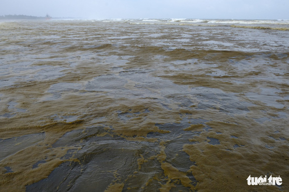 Nước biển đen như cà phê ở Dung Quất - Ảnh 7.