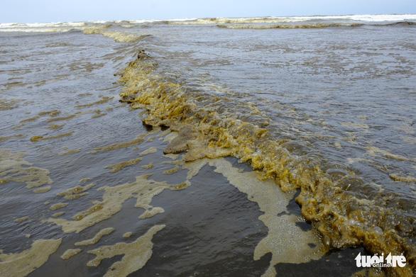 Nước biển đen như cà phê ở Dung Quất - Ảnh 5.