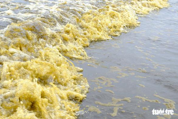 Nước biển đen như cà phê ở Dung Quất - Ảnh 8.