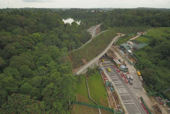 Singapore làm cầu vượt trồng cây rừng dành cho động vật - Ảnh 1.