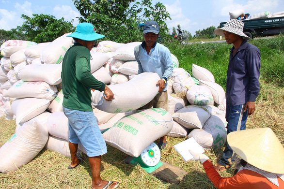 Trung Quốc áp thuế cao, xuất khẩu gạo Việt gặp khó - Ảnh 1.
