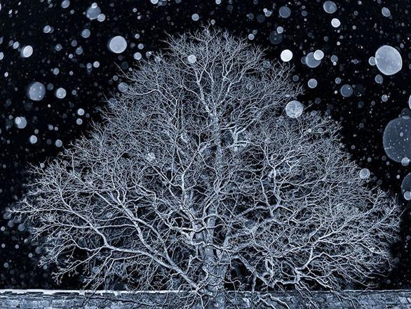 Trái đất tráng lệ trong cuộc thi ảnh phong cảnh quốc tế - Ảnh 16.