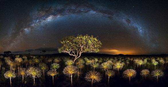 Trái đất tráng lệ trong cuộc thi ảnh phong cảnh quốc tế - Ảnh 17.