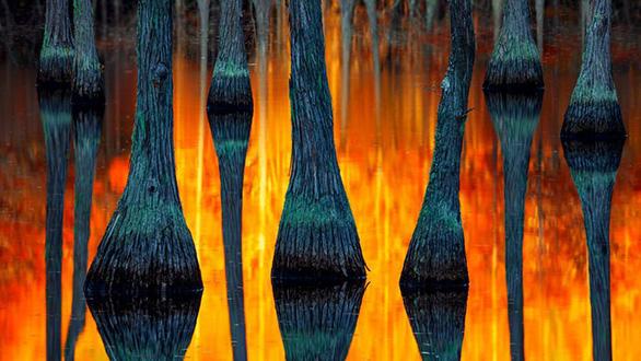 Trái đất tráng lệ trong cuộc thi ảnh phong cảnh quốc tế - Ảnh 5.