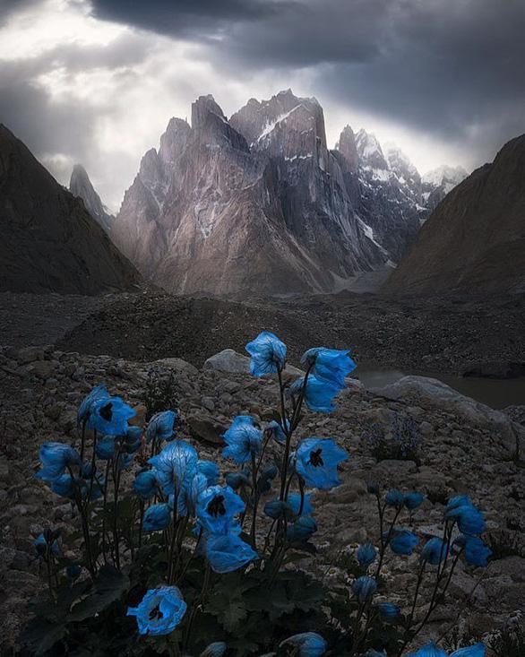 Trái đất tráng lệ trong cuộc thi ảnh phong cảnh quốc tế - Ảnh 6.