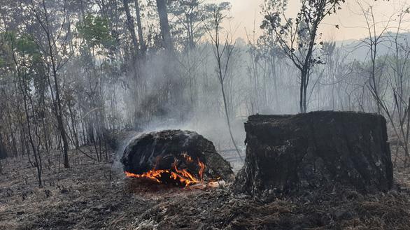 Huy động hơn 100 người chữa cháy rừng - Ảnh 2.