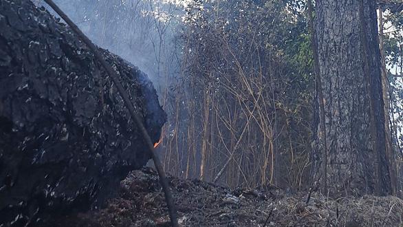 Huy động hơn 100 người chữa cháy rừng - Ảnh 4.