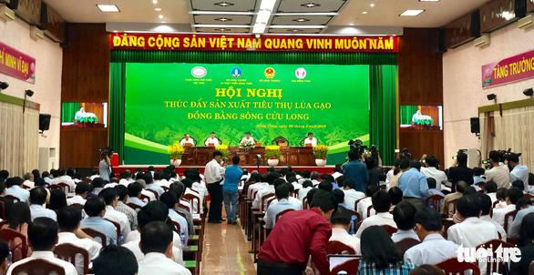 Đối sách các nước tiêu dùng thay đổi, gạo Việt gặp áp lực - Ảnh 1.