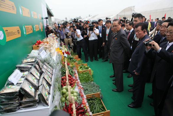 Phái đoàn Triều Tiên thăm tập đoàn Vingroup tại Hải Phòng - Ảnh 9.